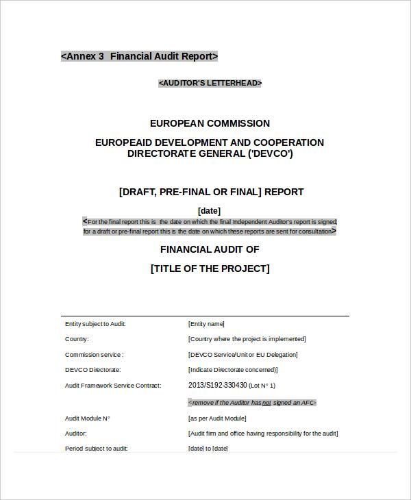 Financial-Audit-Report1.jpg
