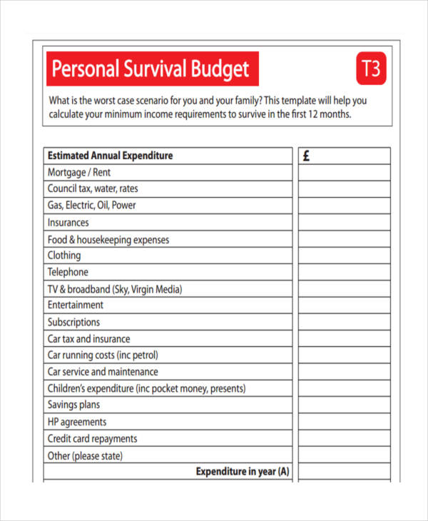 annual survival budget