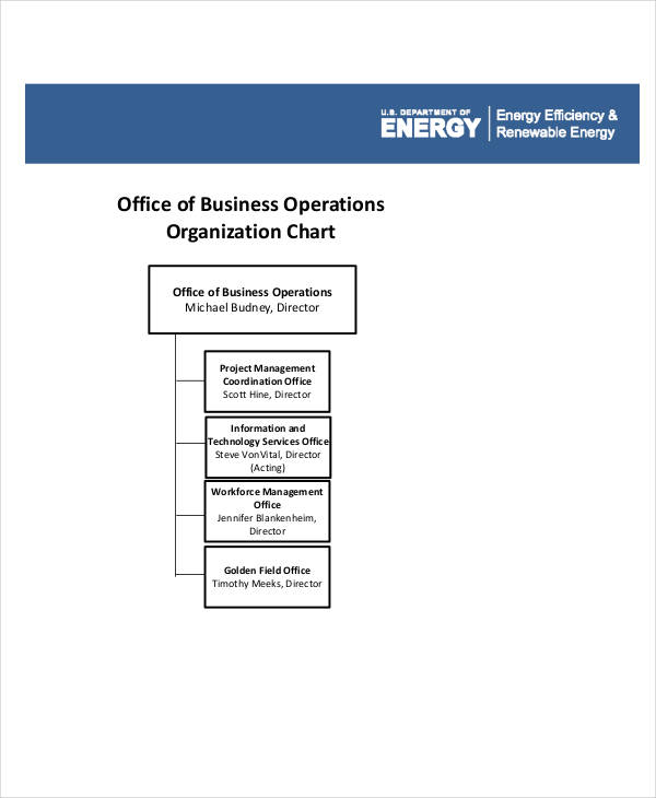 business organization flow chart