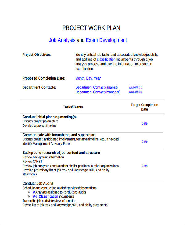 development project work plan1
