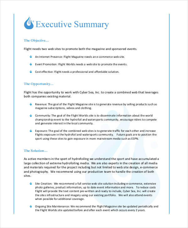 Free Formal Business Proposal Example  Executive Summary Proposal Template