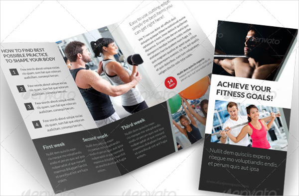TriFold Brochure Examples Samples
