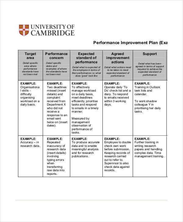 Performance Improvement Action Plan  Example Action Plan Template