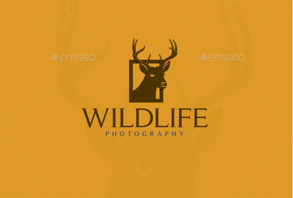-Professional Wildlife Photography Logo