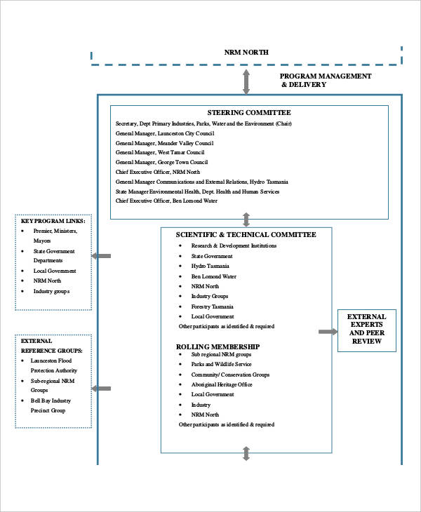program management flow chart