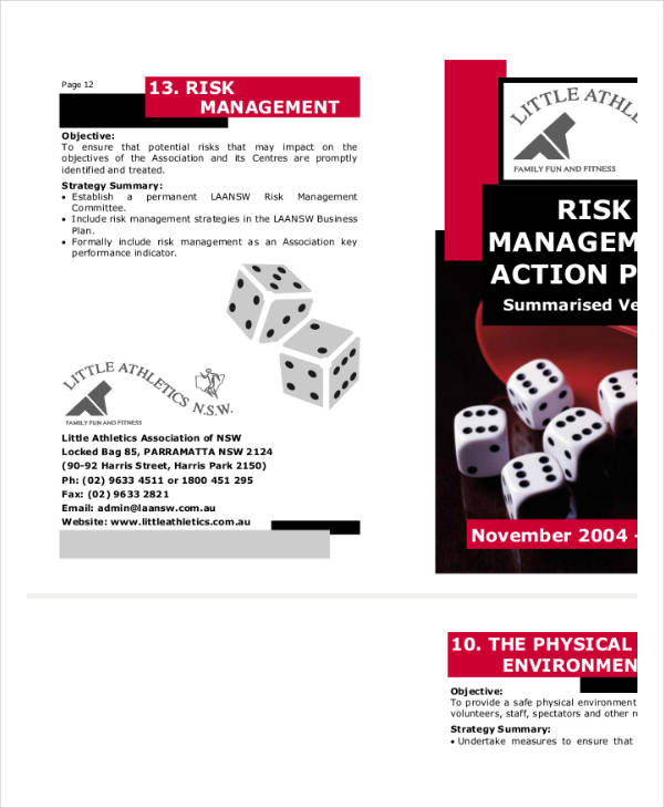 risk management action plan