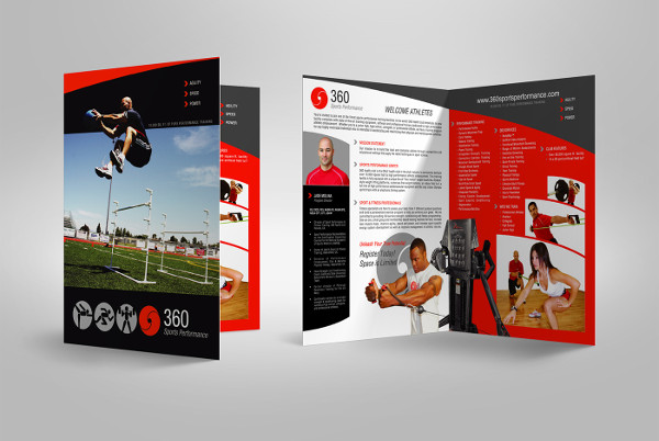 sports business bifold brochure