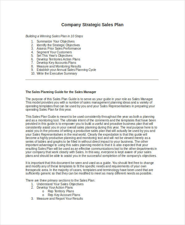 company strategic sales plan