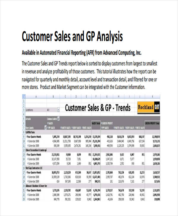 customer sales analysis report