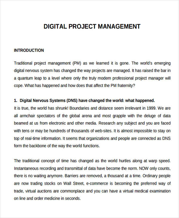 23 project management examples and samples pdf word pages