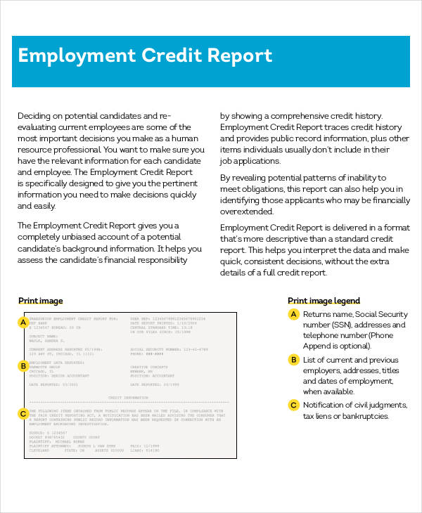 Credit Report Examples Samples