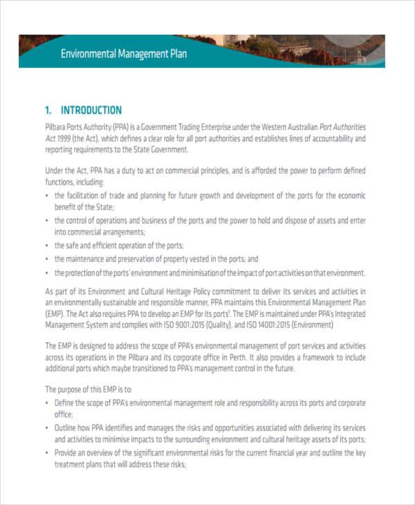environmental risk management plan