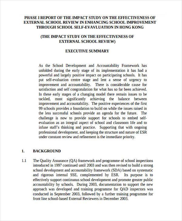executive report
