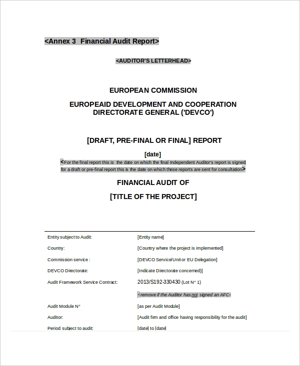 financial audit report1