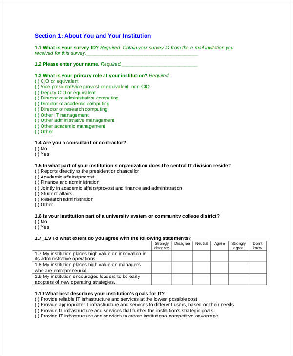 it survey questionnaire example