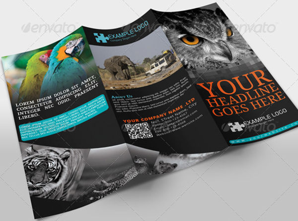 jungle tourism advertising design