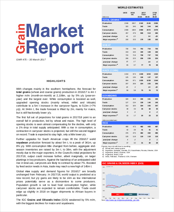 marketing report