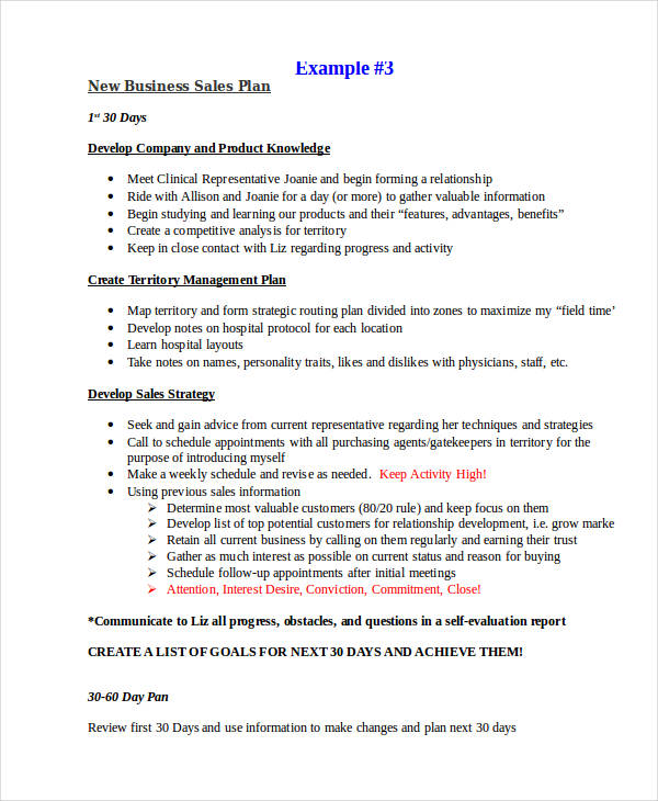 Sales Plan Examples - Business sales plan template
