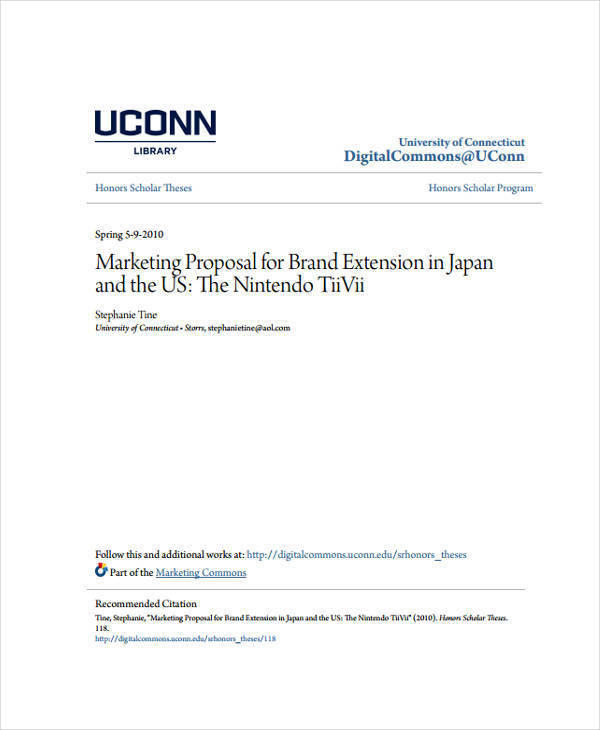 professional marketing proposal2