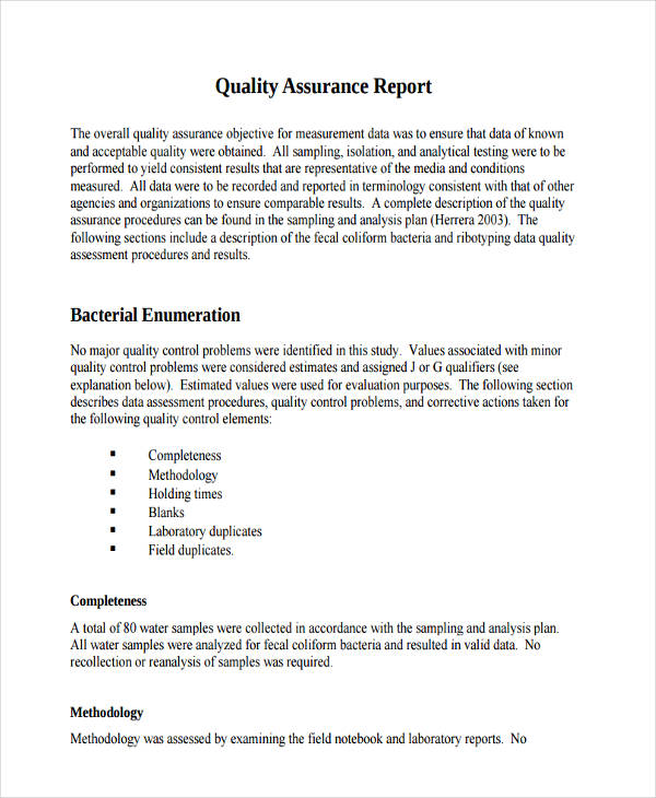free 12  quality report examples in word
