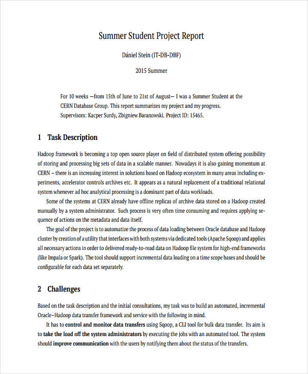 Project Report Examples  Samples  Pdf Word