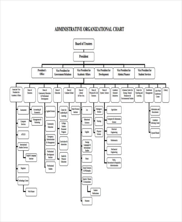 administrative organizational chart