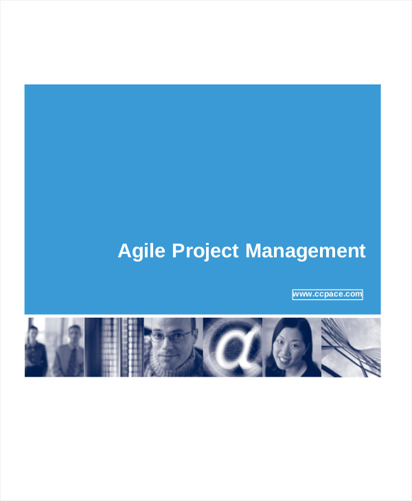 agile program management