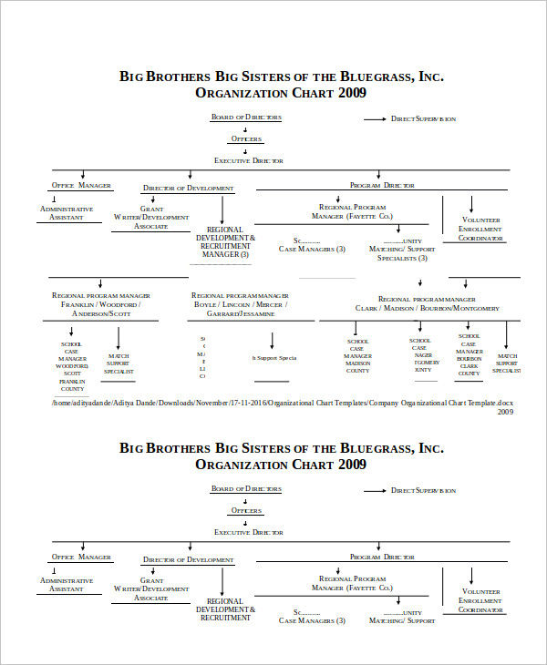 company organizational chart