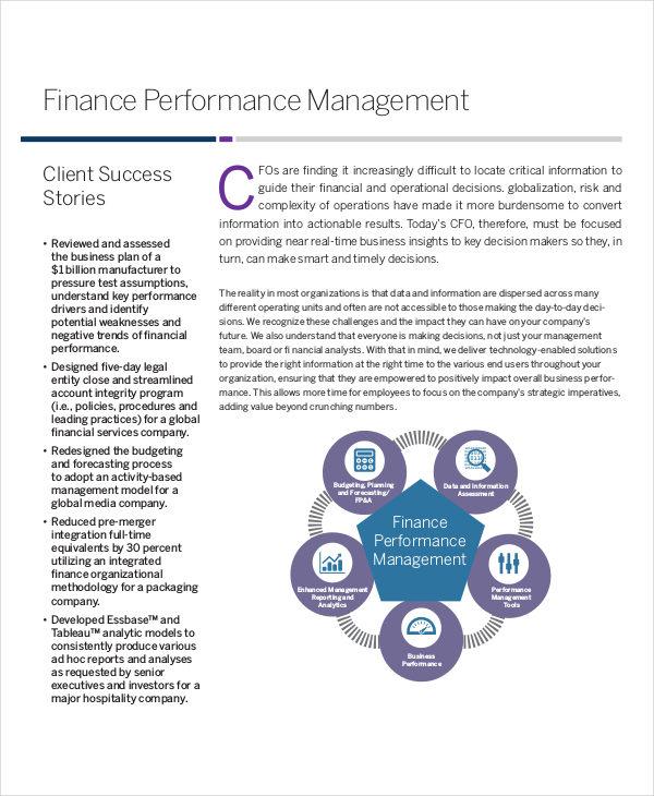 finance performance sample