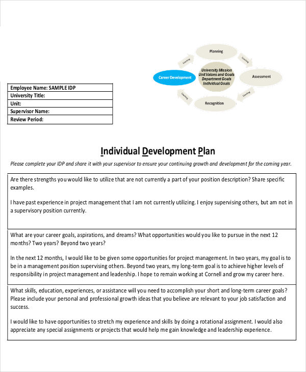 Individual Development Plan Examples  Samples  Pdf Word