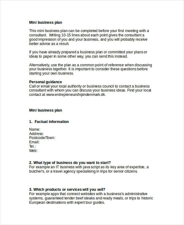 22 simple business plan examples pdf word pages mini business plan3 cheaphphosting Images