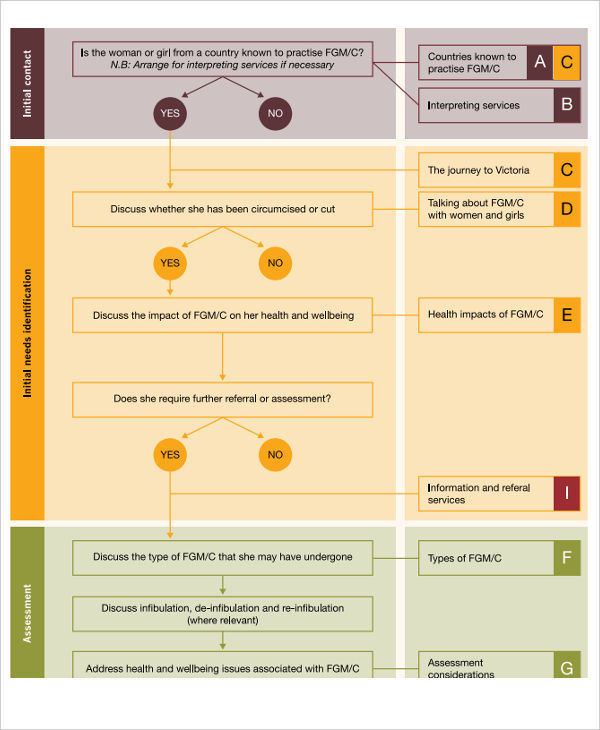 Nursing Care Plan Flowchart Example