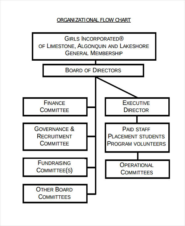 organizational flow chart for business