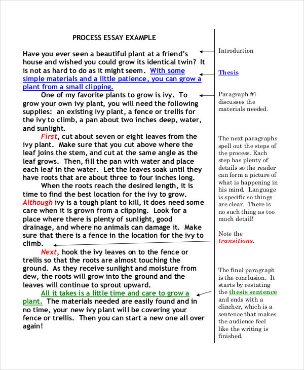 proces essay Introduction to outlining students who don't understand the benefits of outlining  are inclined to skip the prewriting process, thinking it will save them time yet for.