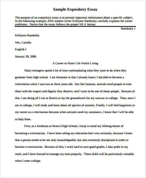Awesome Intro Essay Example