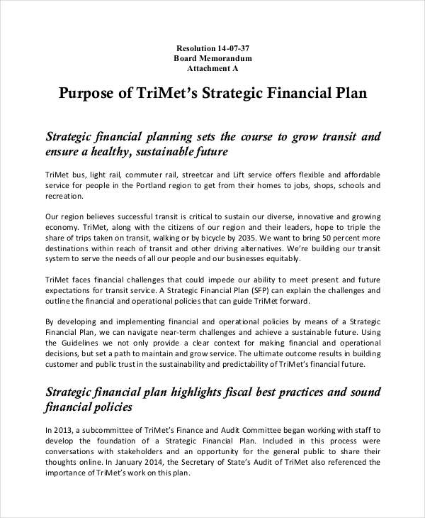 Financial Plan Examples Samples