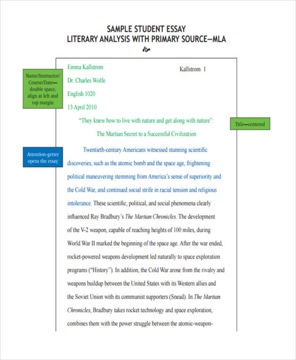 Examples of essay in literature