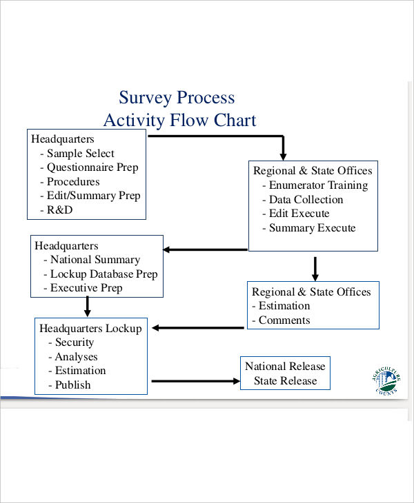 survey process activity