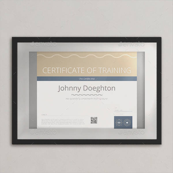 Training Certificate Examples Samples