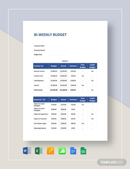 9+ Bi-Weekly Budget Plan Examples & Samples | Examples