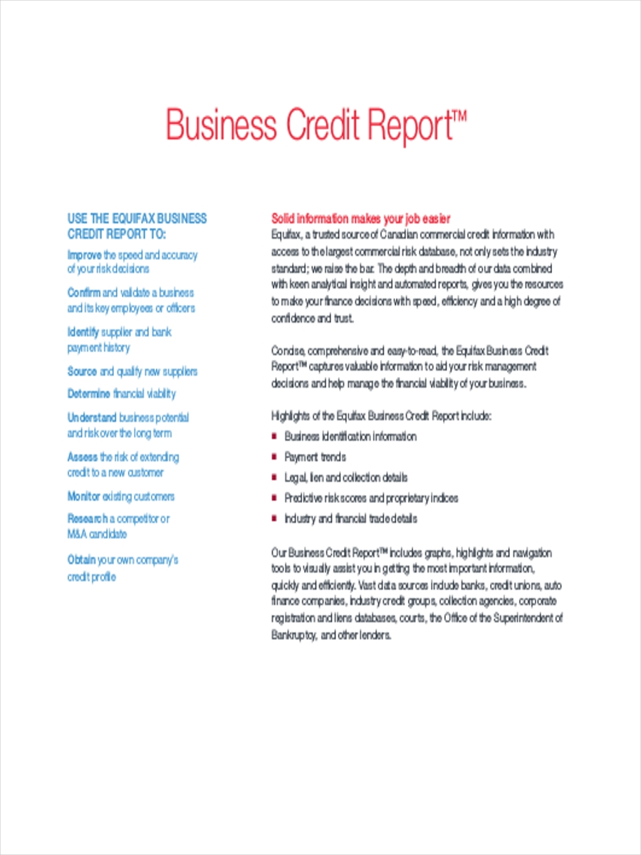Business Credit Report Sample