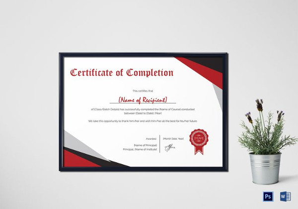 38+ Completion Certificate Examples - PSD, PDF, Word ...