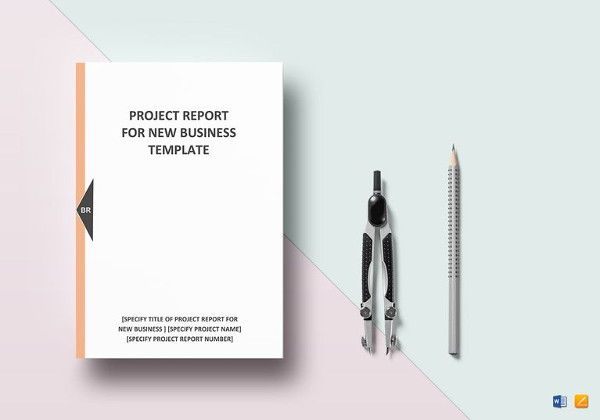 New Business Project Report Template  Business Reporting Templates