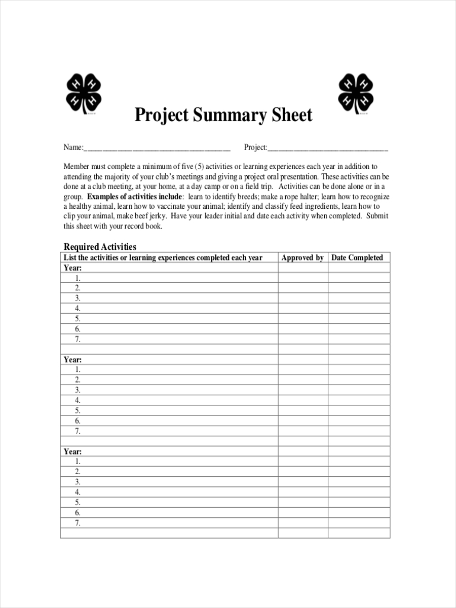 project summary sheet