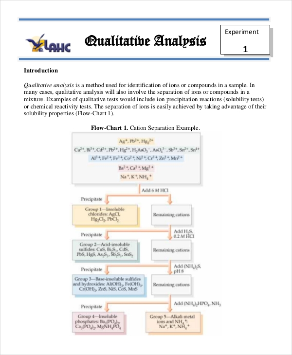 qualitative analysis example1