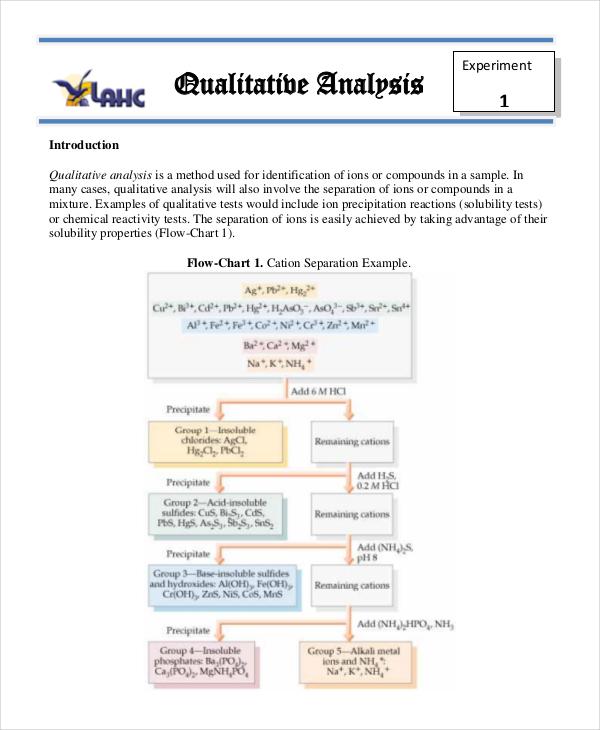 qualitative analysis example1