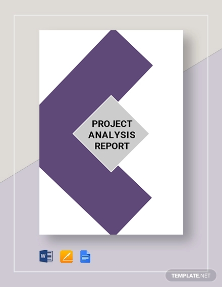 project analysis report