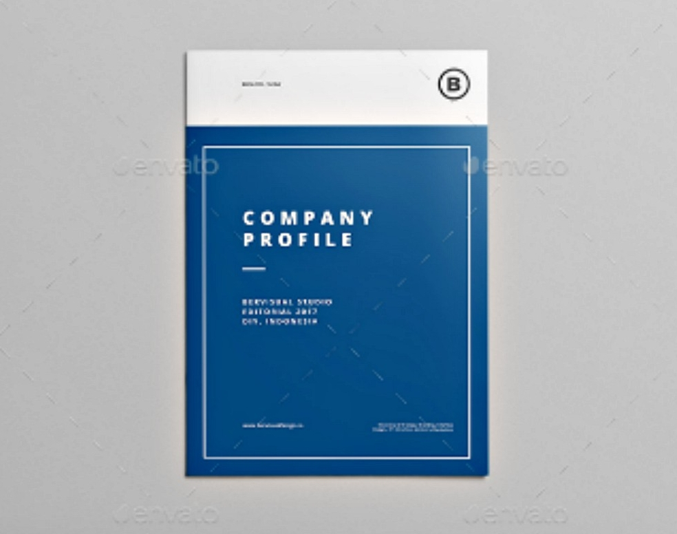 blue company profile brochure
