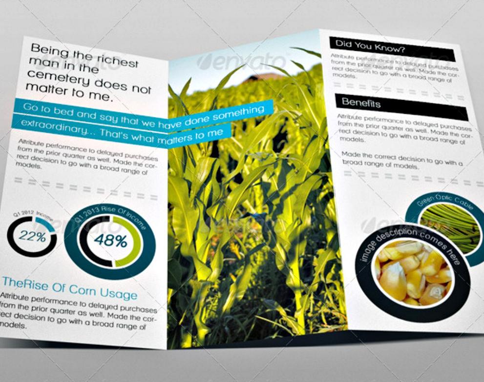 grassy tri fold brochure psd template