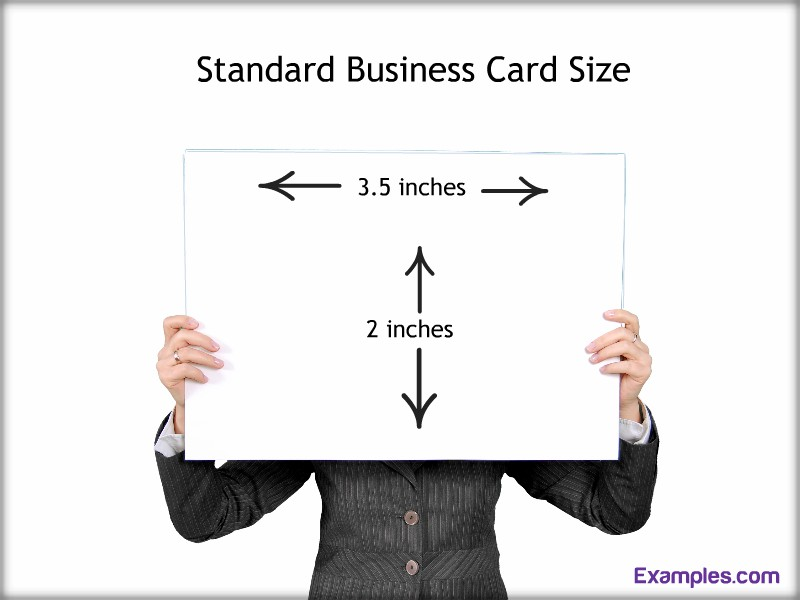 business card standard examples